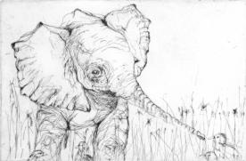 Artist: Cheryl Sward